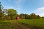 Zweden - Kalmar 4.jpg